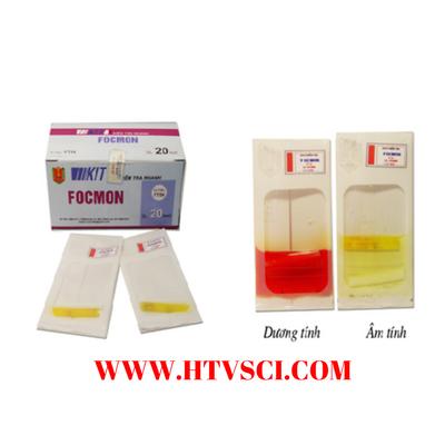 Test thử nhanh foomon FT04 Việt Nam