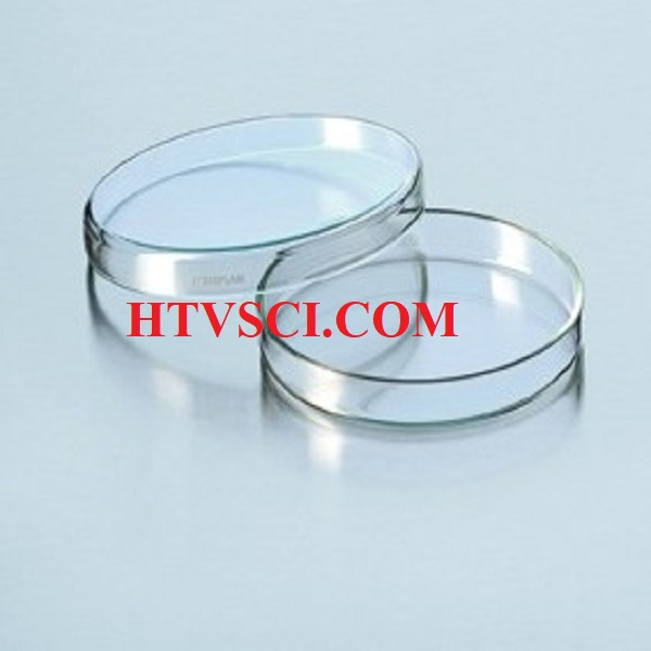 Đĩa petri thủy tinh (Petri disk)